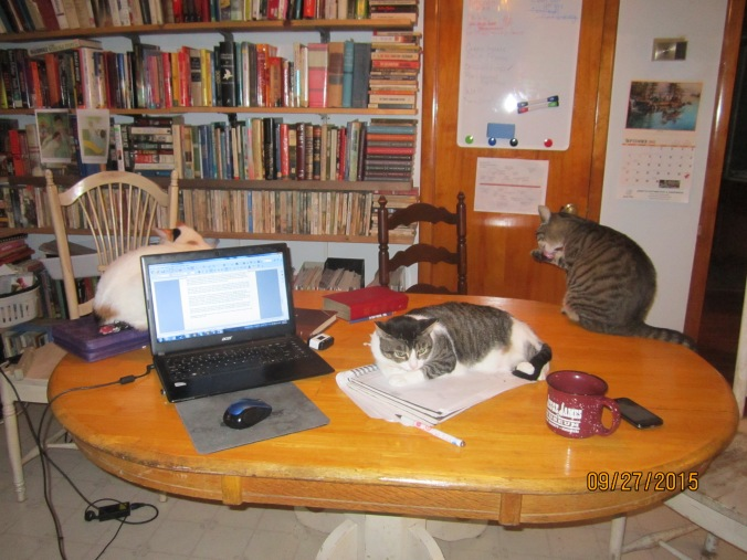 my editorial staff